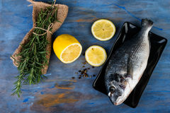 Raw dorado fish with  rosemary and lemon. Cooking process Royalty Free Stock Photo