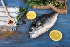 Raw dorado fish with  rosemary and lemon,. Cooking process Stock Images