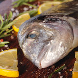 Raw dorado fish with rosemary and sea salt. Server on old paper Royalty Free Stock Photo