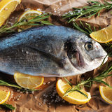Raw dorado fish with rosemary and sea salt. Server on old wooden table Royalty Free Stock Images