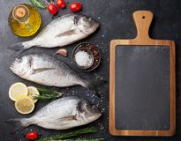 Raw dorado fish. With spices cooking on cutting board. Top view with space for your text Royalty Free Stock Photo