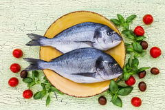 Raw dorado fish on yellow plate with basil and tomatoes on green table Royalty Free Stock Photo
