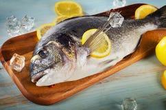 Raw dorado with lemon on  a cutting board.  Royalty Free Stock Image