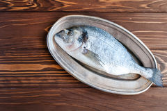 Raw dorado on the plate Royalty Free Stock Images
