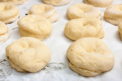 Raw dough prepared for donuts lined up on the table Stock Photo