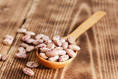 Raw dried beans Royalty Free Stock Image