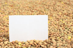 Raw Dried Lentils with Card Royalty Free Stock Images
