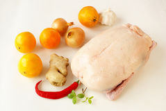 Raw duck Stock Photos
