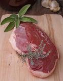 Raw duck breast Stock Images