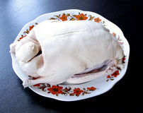 Raw duck drake ready to cook on plate Stock Image