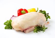 Raw duck. Studio shot of raw duck, vegetables and herbs Royalty Free Stock Images