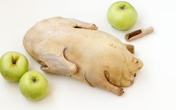 Raw duck  on white background Royalty Free Stock Images