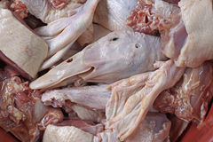 Raw ducks meat. With skin of the neck Royalty Free Stock Image