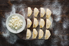 Raw dumplings with cottage cheese Royalty Free Stock Image