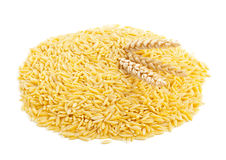 Raw durum wheat with wheat ears. Heap of dried durum wheat, also hard wheat or macaroni wheat, with wheat ears over white background Stock Images