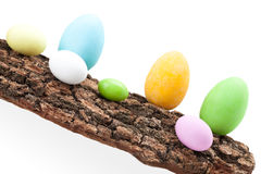 Raw Of Easter Eggs On Bark Stock Photos