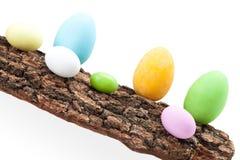 Raw Of Easter Eggs On Bark Stock Photos