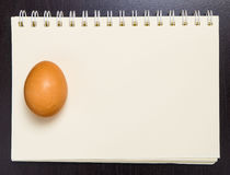 Raw Egg on a blank blinder note book. Raw Egg on a blank blinder notebook Royalty Free Stock Photography