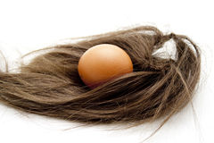 Raw egg and hairpiece Royalty Free Stock Images
