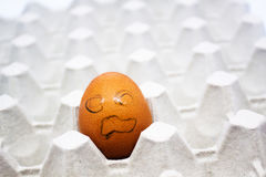 A raw egg in the shell in a paper tray(egg carton) Stock Photo