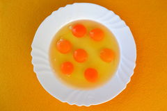 Egg Yolks in a Plate. Raw egg yolks in a plate ready to cook Stock Photography