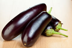 Raw eggplants Stock Photography