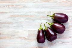 Raw Eggplants on Wood Background. Four ripe raw Eggplants on Wood Background late Summer seasonal Vegetables with copy space Stock Photo