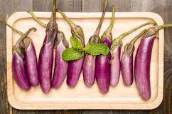 Raw Eggplants. On wooden background Stock Photos