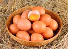 Raw eggs  in  basket Stock Photography
