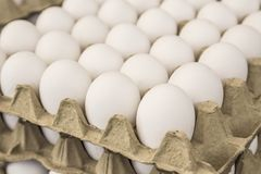 Raw eggs in carton displays for sale in a food market. Raw white eggs in carton displays for sale in a food market Royalty Free Stock Photography