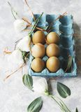 Raw eggs in a carton for eggs with white flowers on a marble white table, ready for painting Easter, selective focus. Raw eggs in a carton for eggs with white Stock Photography