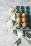 Raw eggs in a carton for eggs with white flowers on a marble white table, ready for painting Easter, selective focus. Raw eggs in a carton for eggs with white Royalty Free Stock Image