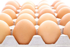 Raw eggs contained carton box Royalty Free Stock Photography