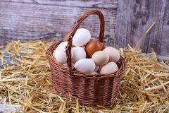 Raw eggs in dry straw. Food concept photo.  stock photos