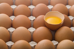 Raw eggs in an egg carton. Close up on raw brown eggs in an egg carton, one broken Stock Images