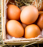 Raw eggs Royalty Free Stock Images