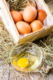 Raw eggs Stock Image