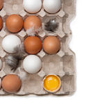 Raw eggs in the tray Stock Photos