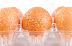 Raw eggs with water drops in plastic package on white background Royalty Free Stock Images