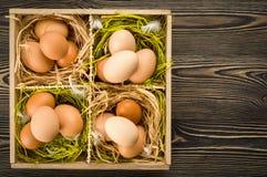 Raw eggs Stock Photo