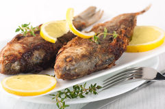 Raw European carp with a thyme and lemon Royalty Free Stock Photos