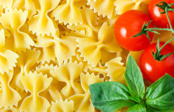Raw farfalle Royalty Free Stock Photos