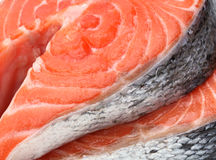 Raw fillet of salmon fish Royalty Free Stock Photos