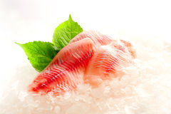 Raw filleted on ice Royalty Free Stock Images