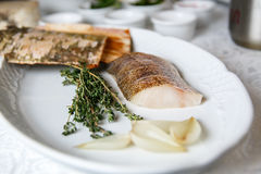 Raw fillets of zander in a plate stock photography
