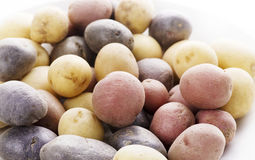 Raw Fingerling potatoes Royalty Free Stock Images