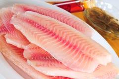 Raw fish. Stock Photos