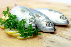 Raw Fish. Close-up of Raw Fish on Chopping Board Royalty Free Stock Photo