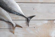 Raw fish, Bonito and Yellowtail Royalty Free Stock Photo