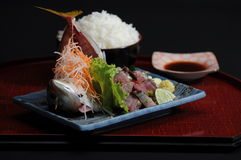 Raw fish and bowl of cooked rice Royalty Free Stock Image